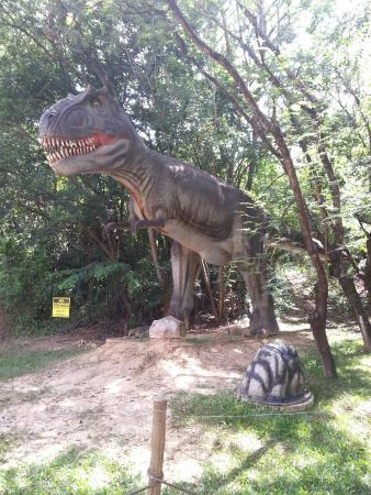 T rex foto de parque da rocha moutonn e salto tripadvisor for T rex location