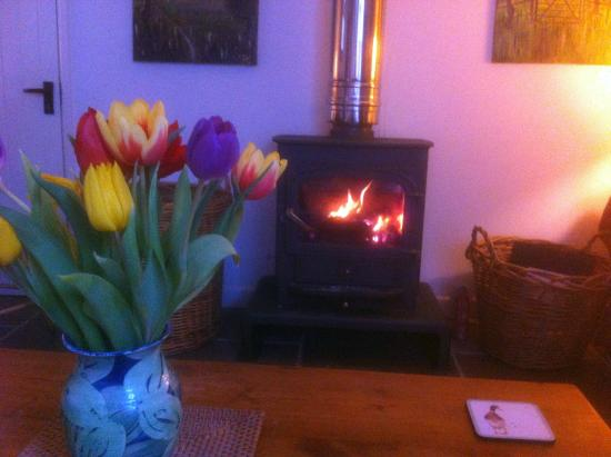 Woodend Farm House B&B: Cosy lounge and log fire
