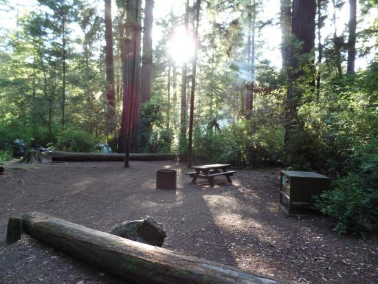 Jedediah Smith Campground : onze plek op de campground