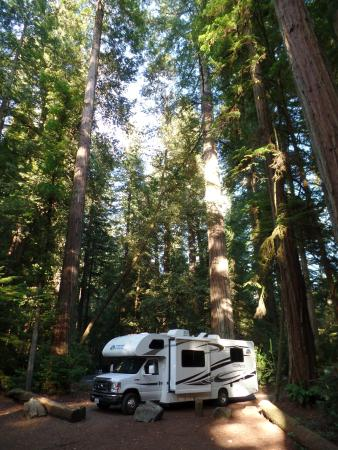 Jedediah Smith Campground : Onze camper tussen de Redwoods