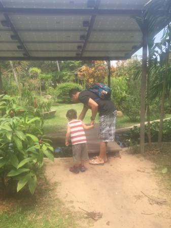 Viveiro Tracoa: Papai e filho observando os sapinhos e girinos
