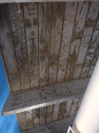 Grand Country Resort: Mold on ceiling in indoor pool area