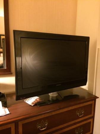 Holiday Inn Buffalo International Airport: grimey smeared tv screen
