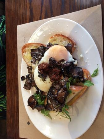 Ombra: mushrooms on toast