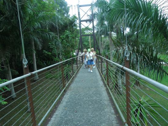 El Jardín Botánico y Cultural William Miranda - Picture of Caguas ...
