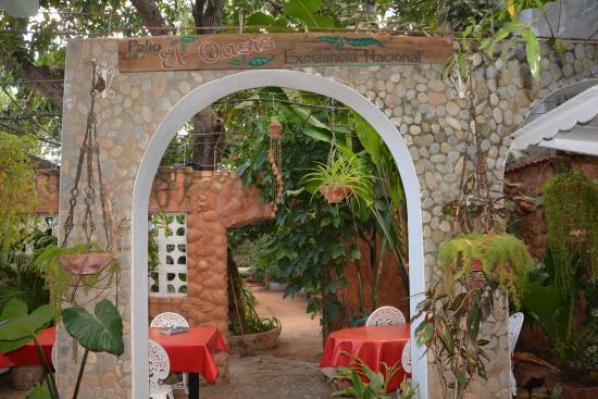 Hostal Oasis Trinidad Cuba : CORTILE