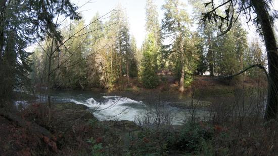"""Chehalis, WA: the """"waterfall"""""""