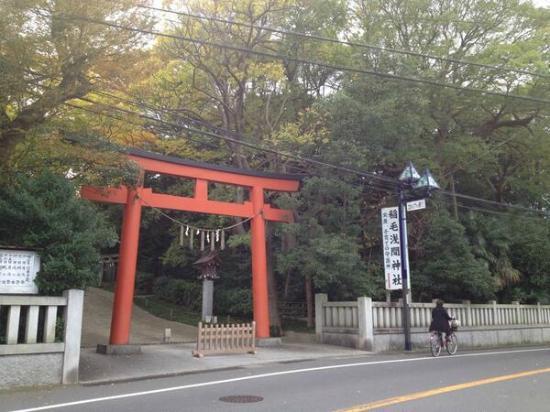 Inage Sengen Jinja Shrine : 大鳥居