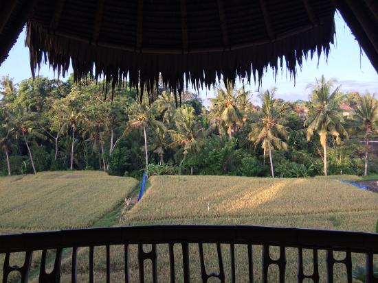 Bamboo Village Le Sabot Ubud: View from upstairs bedroom