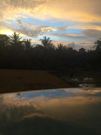 Bamboo Village Le Sabot Ubud: Sunset at the pool