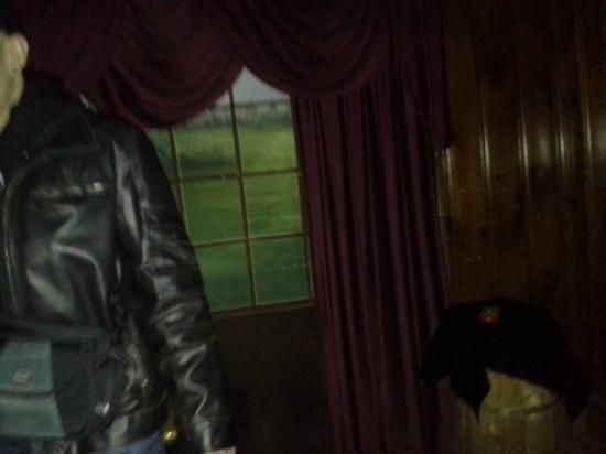 Black Cat Walking Tour In Gettysburg