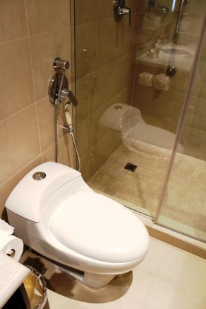 Bidet-like shower head next to toilet - Picture of Hampton By Hilton ...