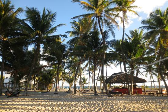 Poc-Na Hostel: Beach at PocNa