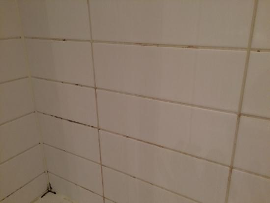 Oaks Liberty Towers : Mouldy Shower