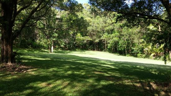 Forest Creek, Australia: Grounds