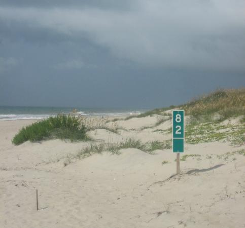 Ocracoke Lifeguarded Beach: fantastic beach