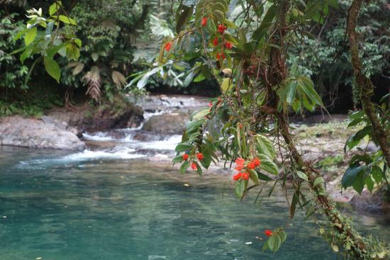 Panamá: Der Weg führt vielmals durch Bäche