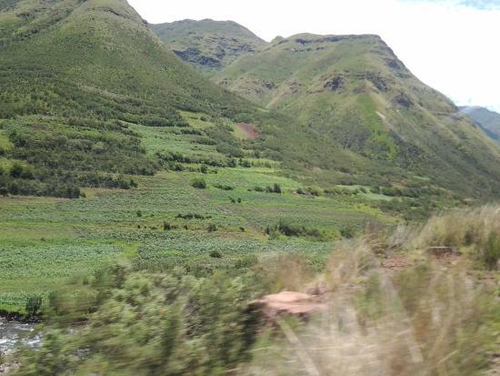Maliba Riverside Huts: green scenery towards the lodge