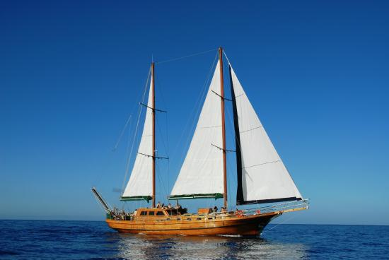 Aphrodite Sailing Boat Excursion - Canary Boat Trips