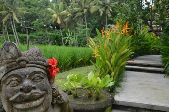 Museo de Arte Angung Rai (ARMA): Rice field