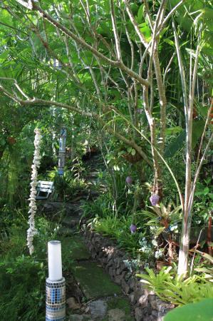Parkwood B&B: Garten