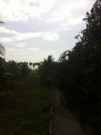 Tropicos Hotel
