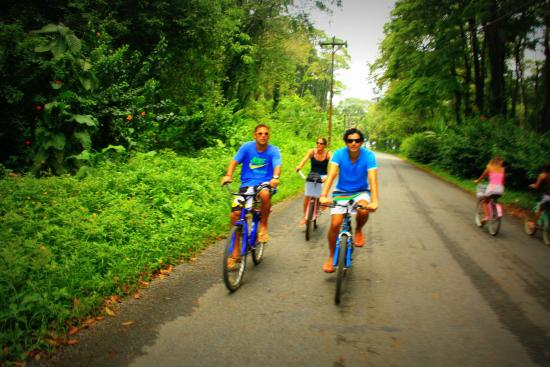 Vista Verde Guest House : las bicicletas