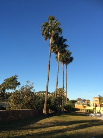 Denia La Sella Golf Resort & Spa : Grounds