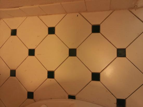 La Quinta Inn Gainesville : Bathroom floor condition when we arrived