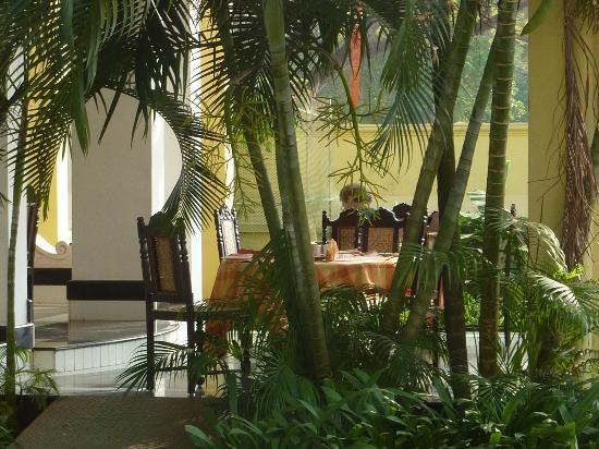 The Poovath Heritage - An Amritara Resort: Afternoon on the Dining Terrace