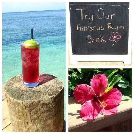 Bite on the Beach: Hibiscus Rum Buck