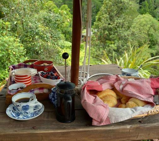 Rangimarie Bush Retreat: Amazing breakfast!