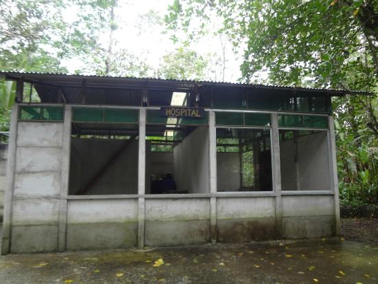 Costa Rica Wildlife Sanctuary: An abandoned building in the jungle