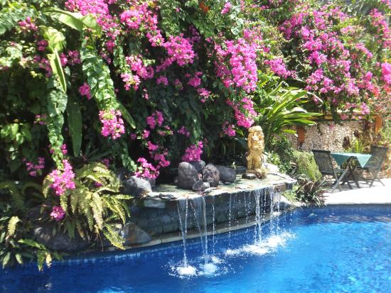 Swimming Pool waterfall - Picture of The Watergarden Hotel ...