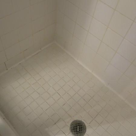 The Kehoe House - A Boutique Inn: dingy tile in shower (room 202)