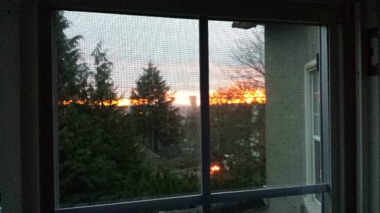 Heron Haus Bed & Breakfast: fabulous view of sunrise from the Rose Room