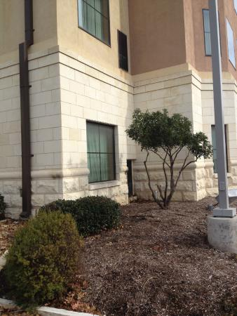 Homewood Suites by Hilton Hotel San Antonio North: Exterior view
