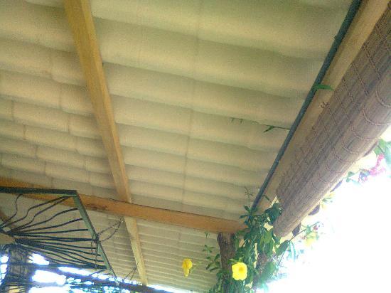 La Casa del Lago Lodging House: Eternit roof (over porch and rooms)