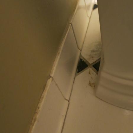 The Kehoe House - A Boutique Inn : grime on tile floor in bathroom