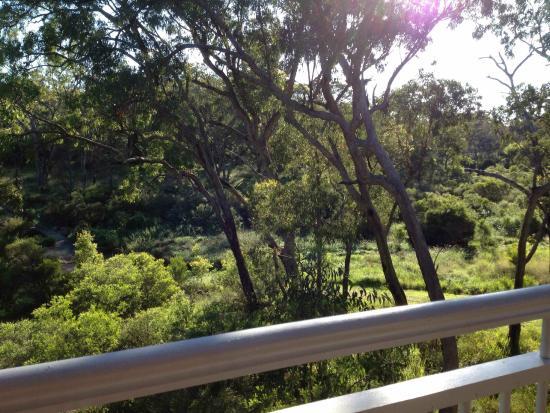 Diamondvale B&B Cottages: View from spacious verandah