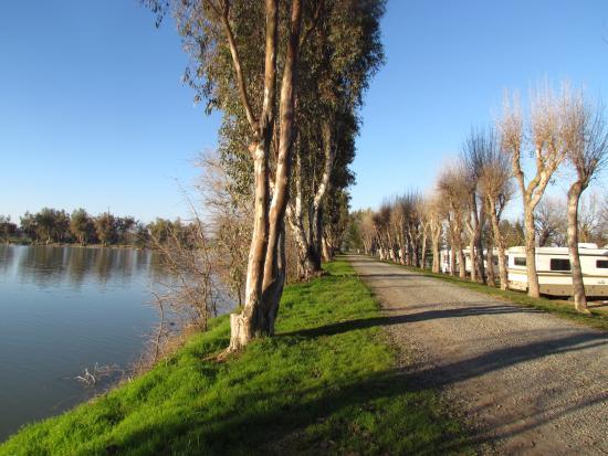 Lake Minden RV Resort : walk or drive around the lake