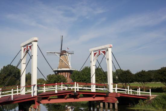 Holland, MI: Windmill Island Gardens is 36-acre park home to the only authentic working Dutch Windmill in the