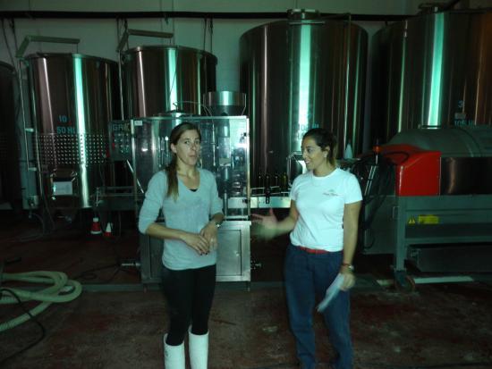 Estancia Finca Piedra: Visit of the winery