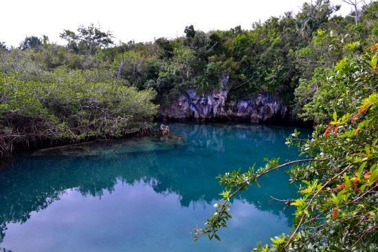Tom Moore's Jungle : Blue Hole
