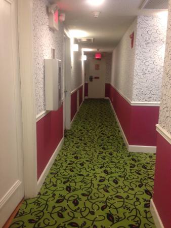 Hotel Indigo St Petersburg Downtown North: Hallway
