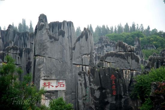China Odyssey Tours Kunming