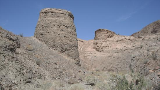 Ocotillo, CA: Fossil Canyon