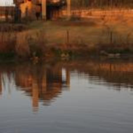 Ardmore Guest Farm: Wonderful accommodation in a tranquil farm setting.