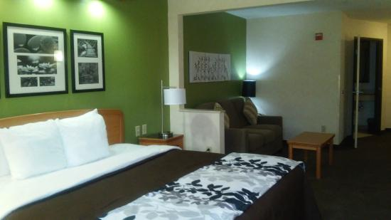 Sleep Inn & Suites: Newly Renovated Rooms