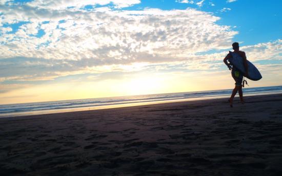 Mini Mop Surf Shop: A surfer at sunset